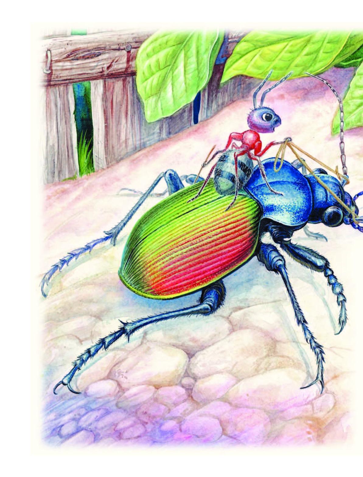 запросу рисунок к рассказу приключения муравьишки интерактивных