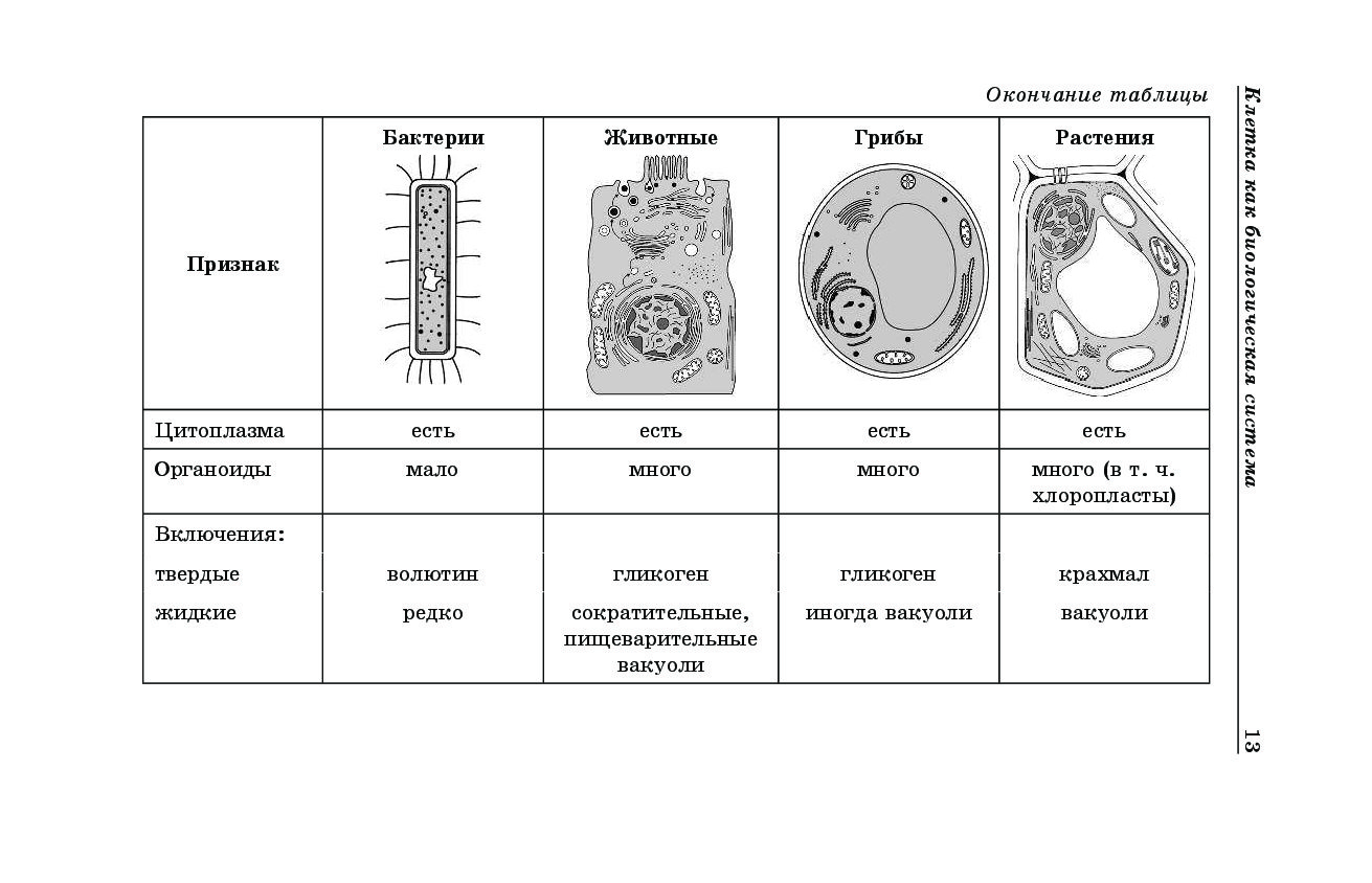 планировал биология в картинках и схемах огэ снимок