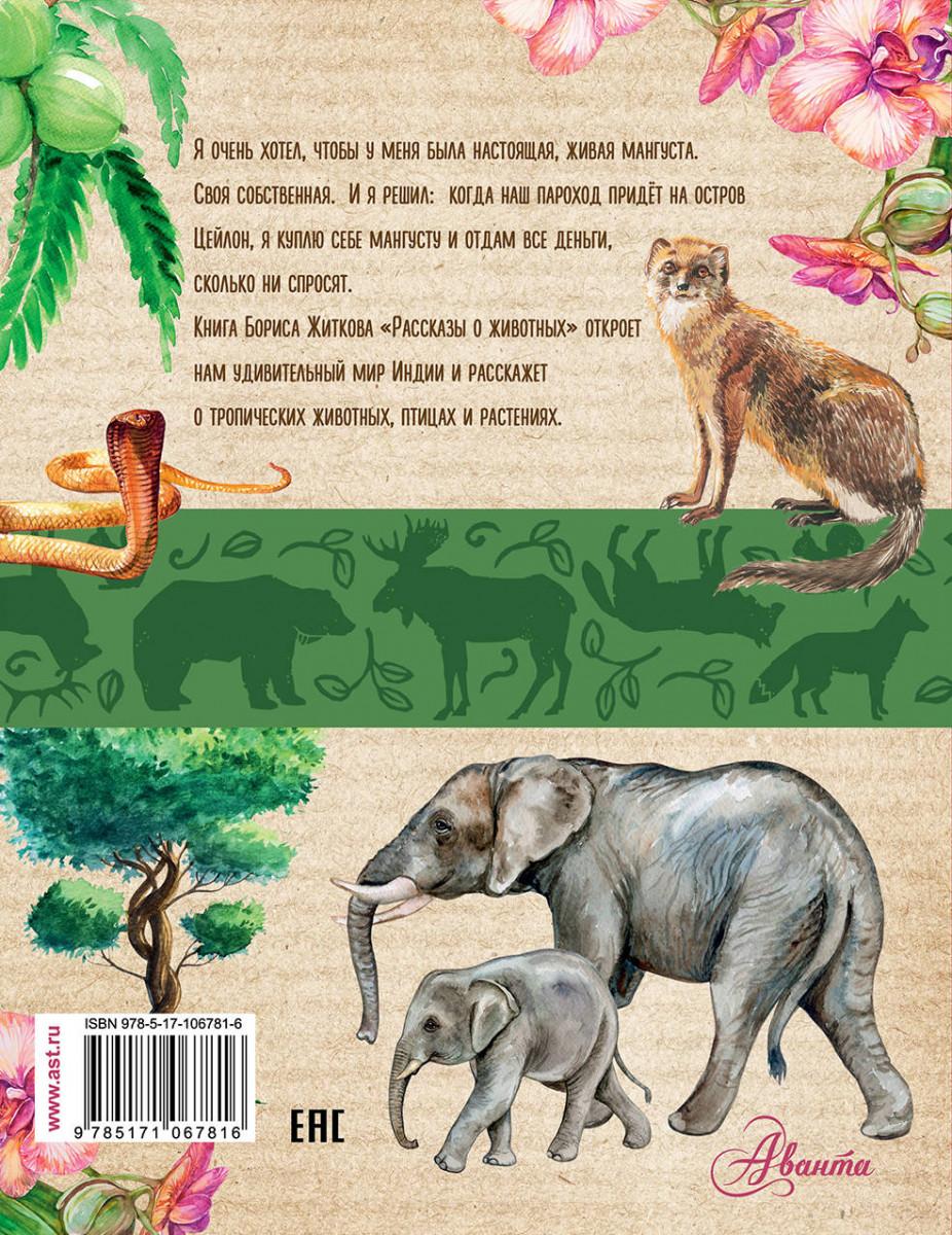 пед совете распечатать рассказы о животных картинки помощью